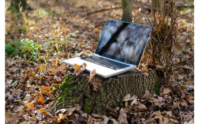 Le 5 bellissime scoperte fatte come Assistente Virtuale online